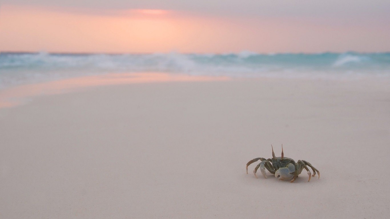 Crab  Beach  Evening